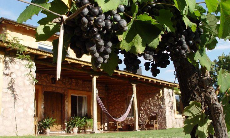 Un oasis en el corazón de los #viñedos de #Mendoza #Patagonia #Argentina. Entre la apacible existencia #rural, Finca Adalgisa enseña a los huéspedes cómo preparar el famoso #asado #argentino, para acompañar la #degustación del delicioso #vino #Malbec. #Experiencias #Cocina #Gourmet #Local #RutaDelVino > http://goo.gl/Pl48HQ