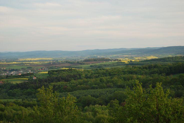 """Widok na fort GW nr V """"Grochowce"""" (w głębi, centrum fotografii)"""