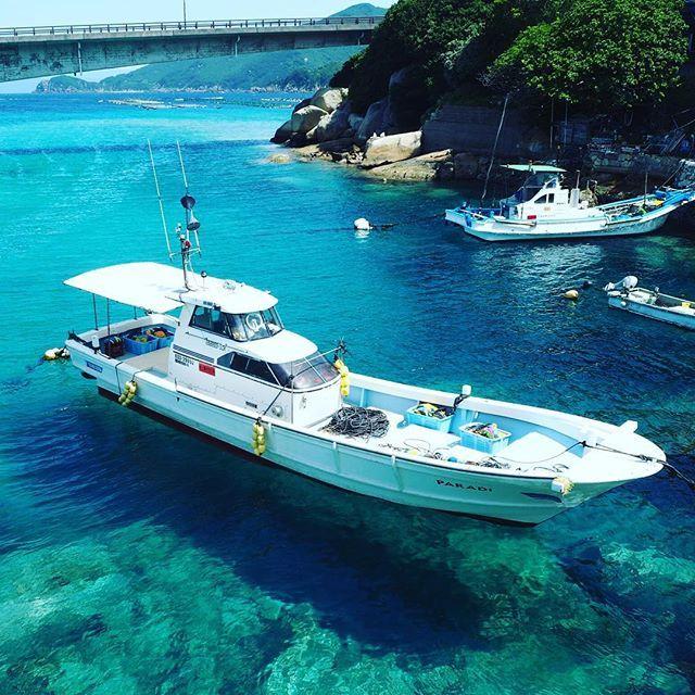 柏島の入り口、水の透明度と光と海底の砂の色のせいで、まるで船が浮いているみたいで感動的。 the boat seems to float in the air,right? #竜が浜#柏島#海#高知#旅#旅好き#旅行#trip#travellover#travel#kochi#Japan#sea#ocean#clear#浮遊#floating#絶景#絶景ハンター#wanderlust四国旅#絶景旅
