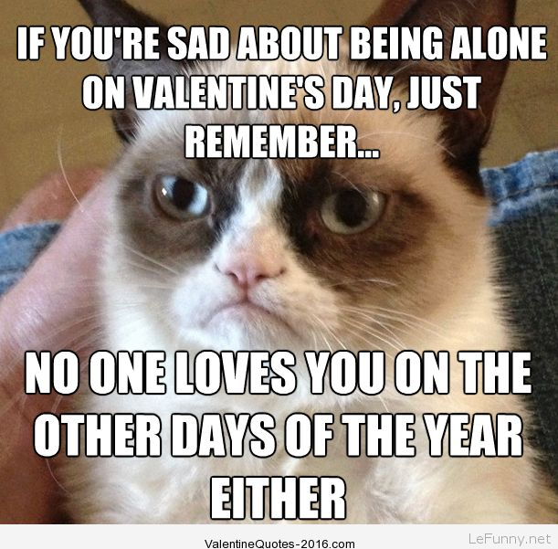 Funny Single Valentines Day Quotes Pictures