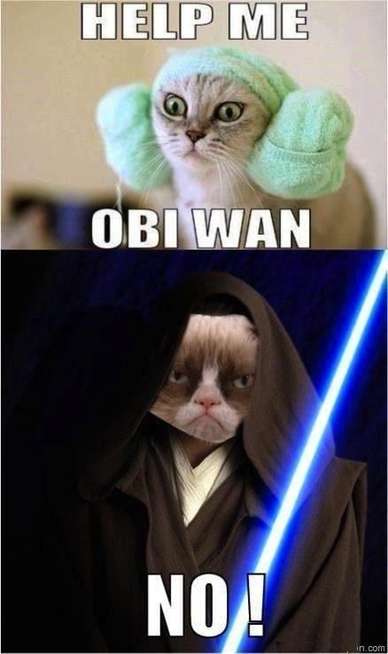Grumpy cat won't help anybody...