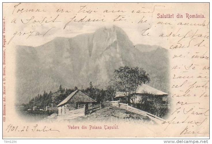 Poiana Tapului - Vedere - 1900