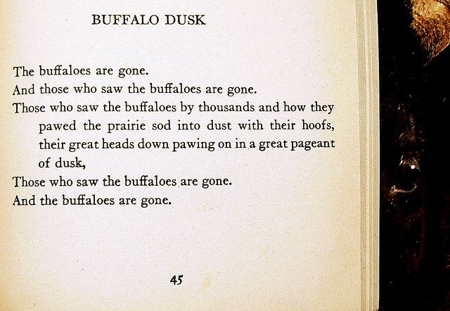 an analysis of the poem buffalo dusk Explore how the flower- fed buffaloes ( by vachel lindsay) powerfully conveys feelings about human destruction of the natural world the flower-fed buffaloes is a nature poem in which the author conveys feelings about human destruction of the natural world.