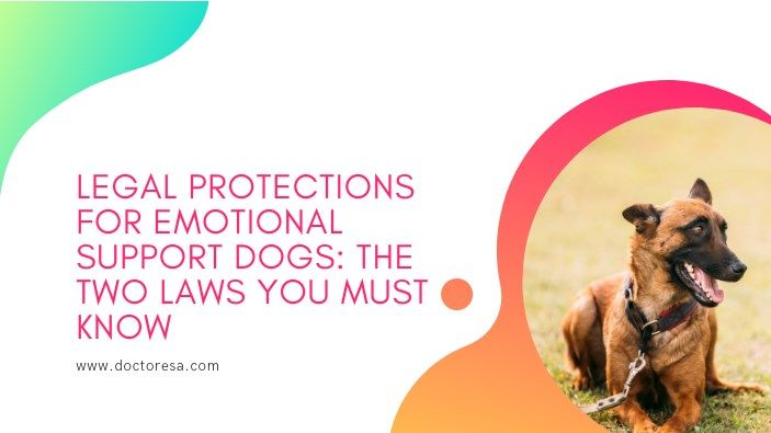 Legal Protections For Emotional Support Dogs The Two Laws Emotional Support Dog Emotional Support Emotions
