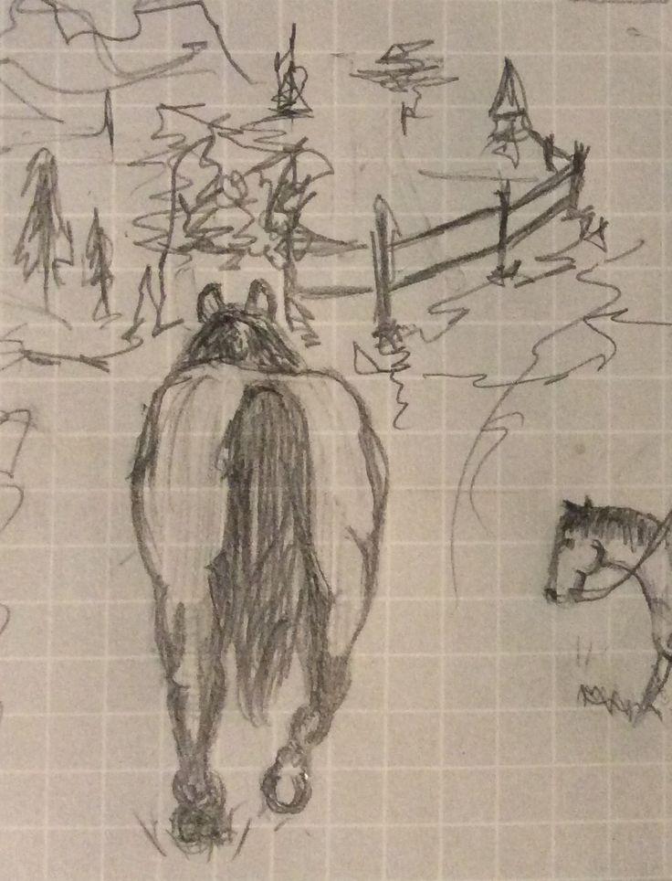 a horses ass