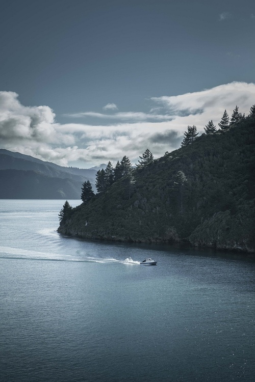 brutality:    lamescapes:    Marlborough Sounds    I was gonna say, this looks like Tory Channel. Haha I know my country too well, it's quite sad.