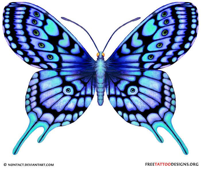 blue tattoo | 60 Butterfly Tattoos | Feminine And Tribal Butterfly Tattoo Designs