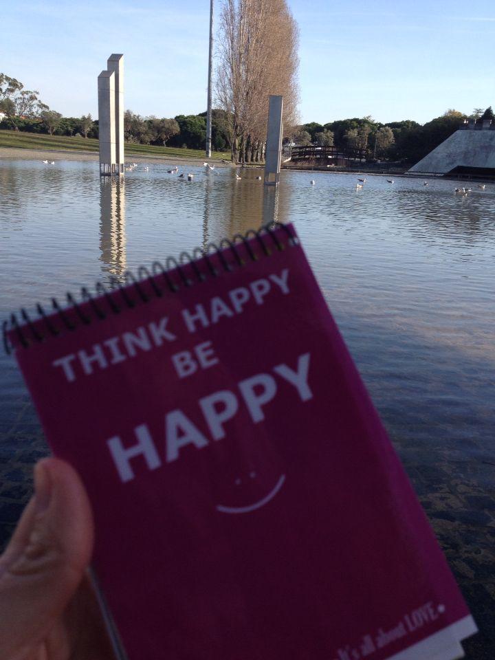Gaivotas em Lisboa #Lisboa #LovethisCity :) #Happy to Work #emotionalcoaching