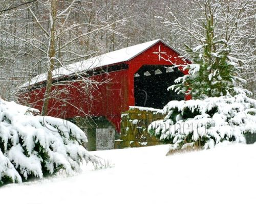 The Carrollton Covered Bridge in Barbour County, is a splash of color on a winter day. The wooden bridge spans the Buckhannon River near Carrollton. It is the second longest and third oldest surviving covered bridge in the state, and is listed on the National Register of Historic Places. Price includes double matting and shipping. Photo Copyright: West Virginia Department of Commerce.