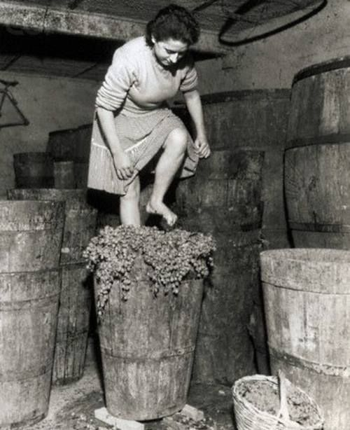 Only Minnie knew that the secret ingredient in her special homemade wine was toe jam...