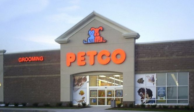 Petco Pulled Treats From Their Store Shelves After Several Cats And Dogs Fell Il Cats Discountp Petco Cavalier King Charles Spaniel King Charles Spaniel