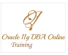Hyderabadsys provides Oracle DBA Online Training with most experienced faculty, In order to have an Oracle DBA career you will go for oracle 11g DBA Online Training. Hyderabadsys provides job oriented and interview based training. Our most of the aspirants are now working in MNC's. Most of the aspirants are very happy with our service.