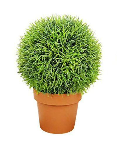 Felices Pascuas Collection 18 inch Potted Two-Tone Artificial Pine Ball Topiary Plant