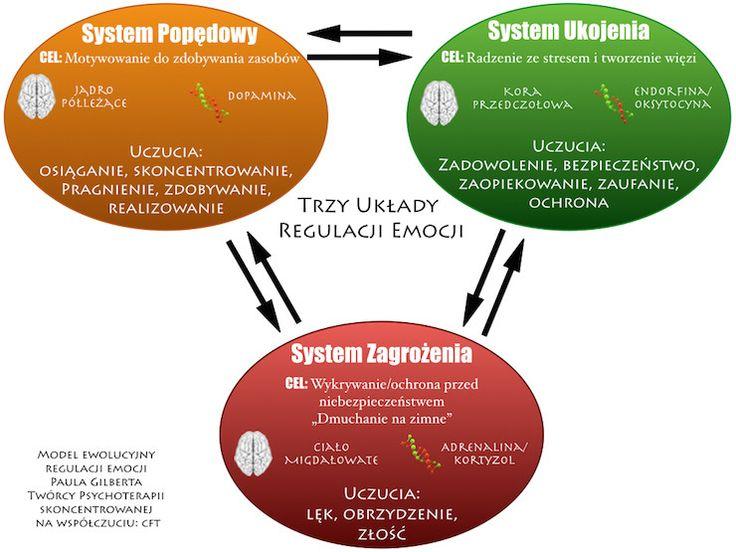 model-regulacji-emocji-trzy-systemy-regulacji-emocji-CFT-terapia-skoncetrowana-na-wspolczuciu model-regulacji-emocji-trzy-systemy-regulacji-emocji-CFT-terapia-skoncetrowana-na-wspolczuciu