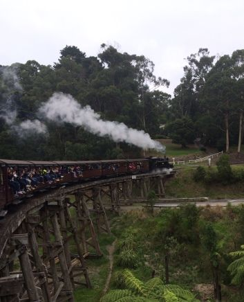 Gray Line half day tour including Puffing Billy steam train ride through the Dandenongs. Gives you the rest of the day to explore Melbourne or perhaps do a Penguin Parade tour