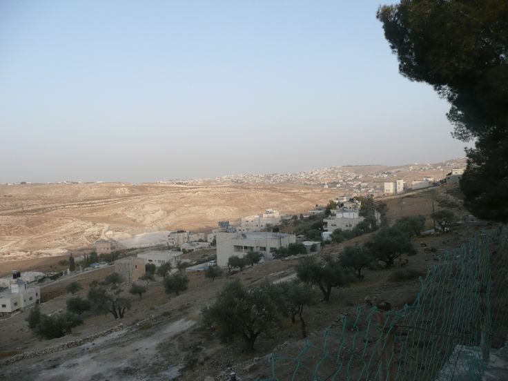 Israel Palestine Tour