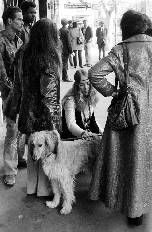 Patting the Dog, Kings Cross 1970-71 | Rennie Ellis Photographic Archive