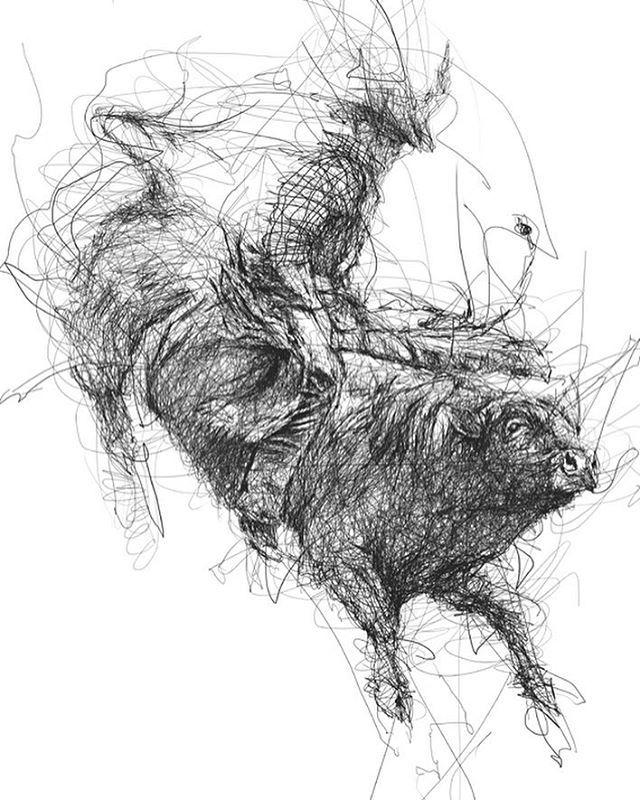 Scribble Drawing Uk : Best cow drawing ideas on pinterest cartoon