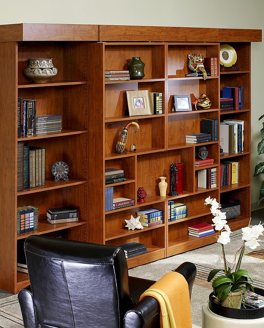 Library Murphy Bed by morespaceplacenashville, via Flickr