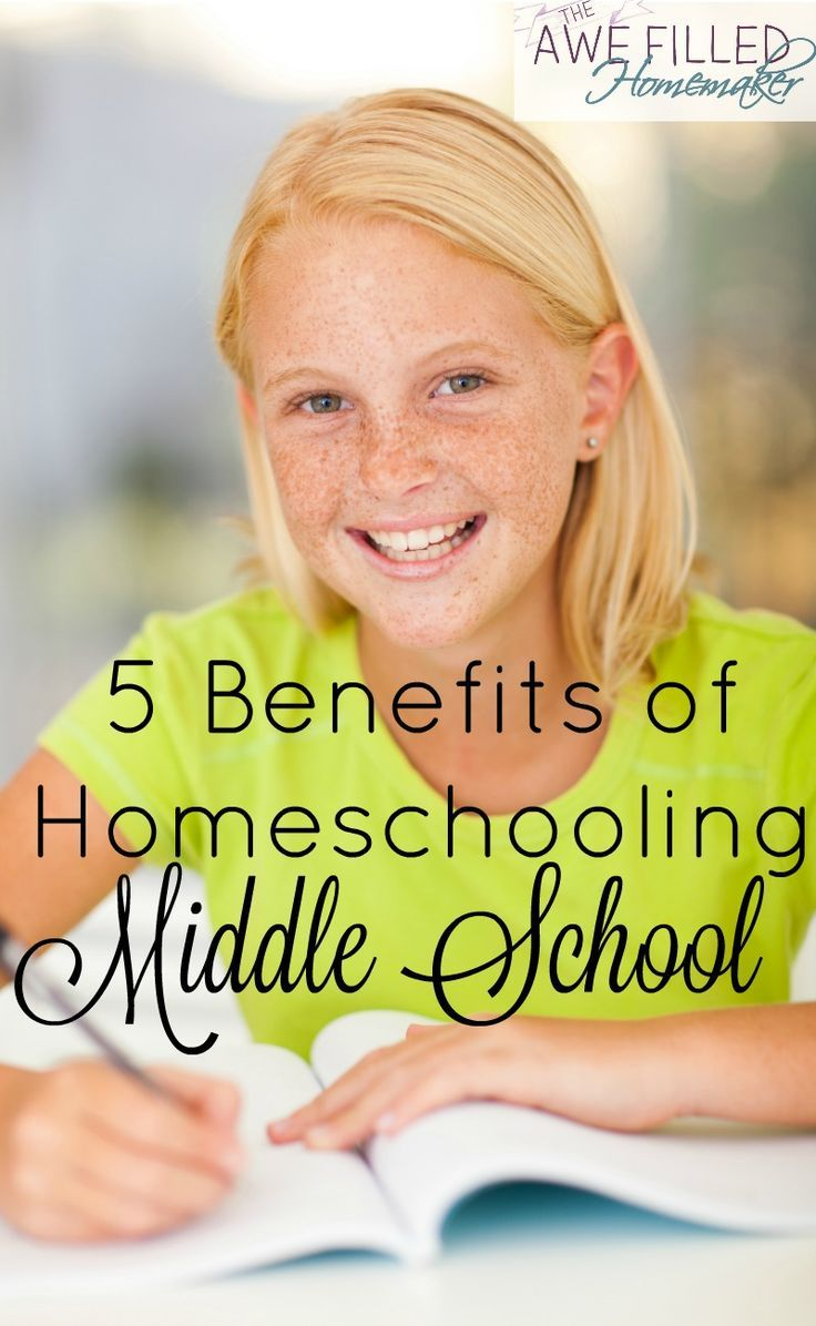 arguments against homeschooling images about advantages of  images about advantages of homeschooling teenage hormones a fear of harder subjects often place fear in argumentative essay against homeschooling
