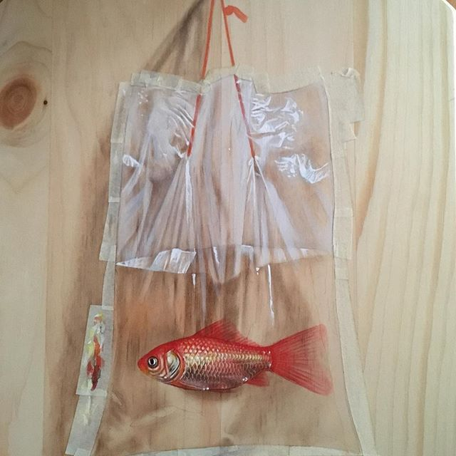 [Customer Request;Goldfish In A Bag.] FW Daler Rowney Artist Acrylic Ink And Derwent Pastel / Pinewood ✨🐟 #ifwisheswerefishes
