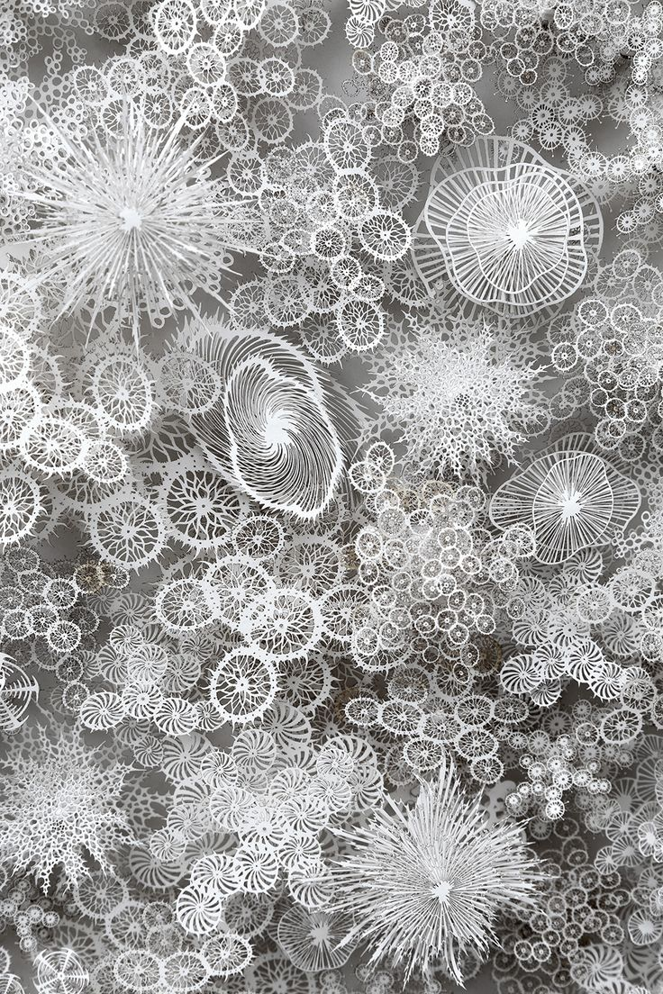 New Hand and Laser Cut Paper Microbes by Rogan Brown
