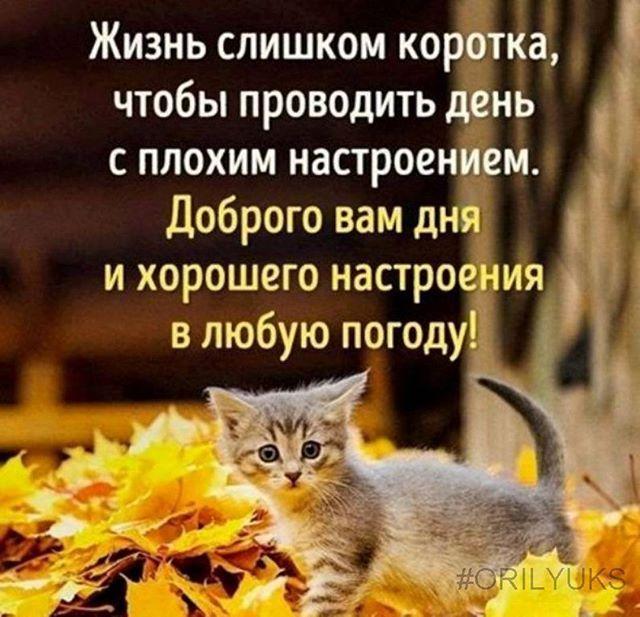 Жизнь слишком коротка, чтобы проводить день с плохим настроением. Доброго вам дня и хорошего настроения в любуюпогоду!#orilyuks #секретвмелочах