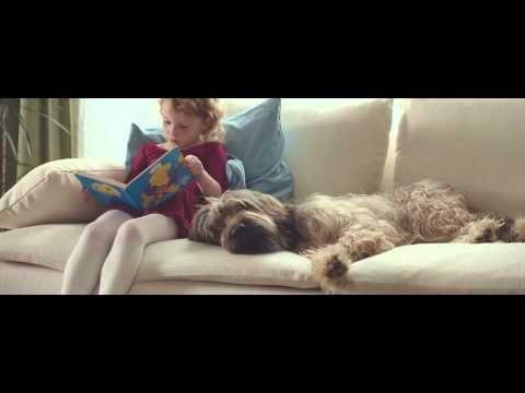 """Allegro """"PIES"""" - YouTube"""