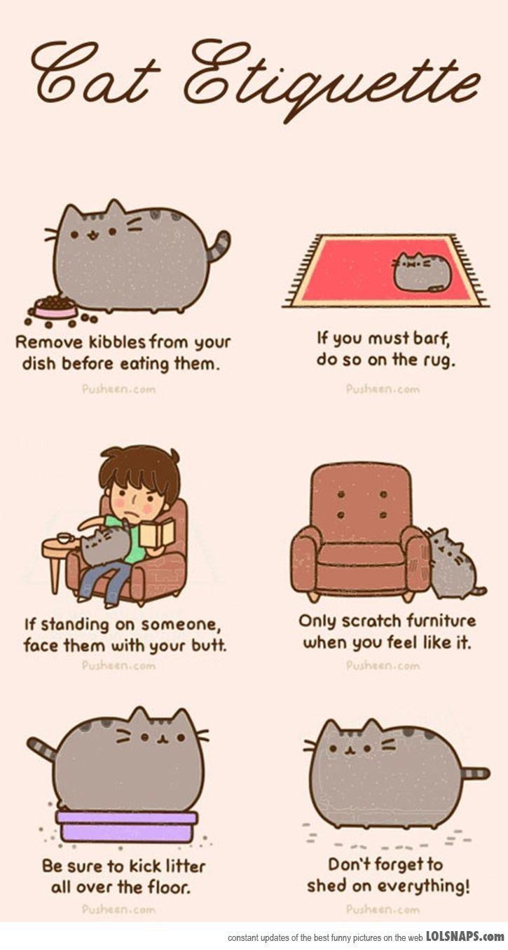 Cat Etiquette According to Pusheen the Cat - Suck My Trend
