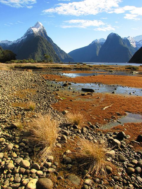 Low tide in Milford Sound, Fiordland, New Zealand (by blue polaris).