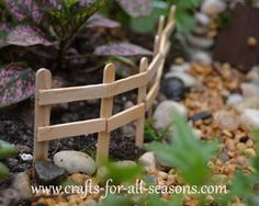 Popcicle sticks for a fairy garden fence