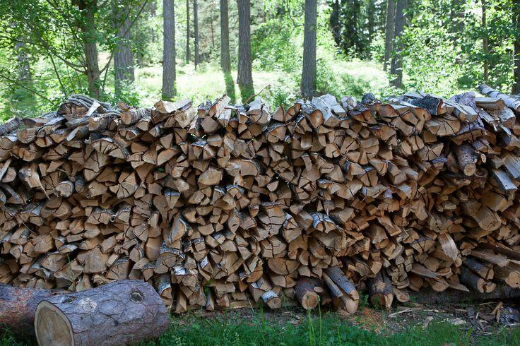 Wood, wood and wood