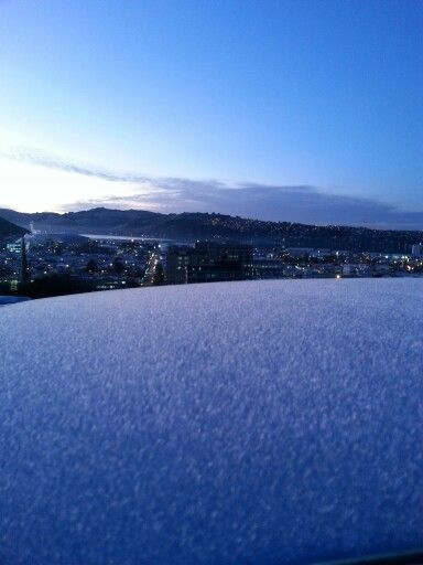Ice on the car roof, Dunedin harbor in the background.  #DunedinSeries