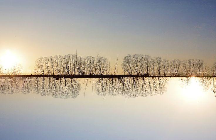 Between Sky & Ground