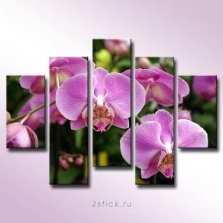 Модульная картина от 2stick.ru Чувственные розовые орхидеи