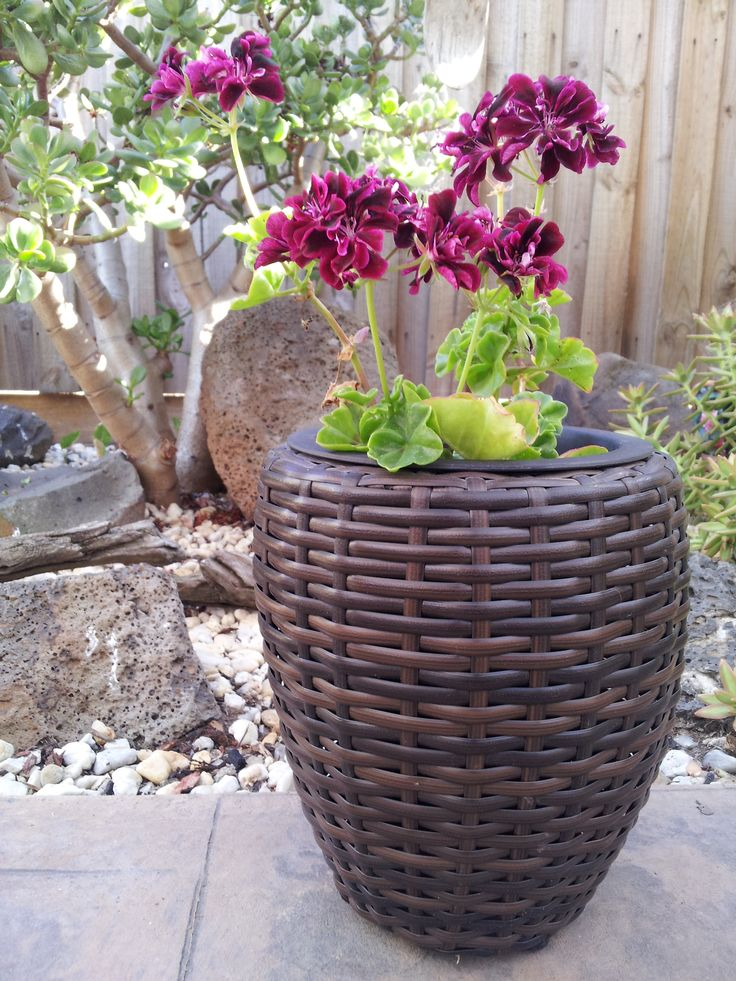 Tuscan Paths New Range Of Poly Rattan Planters Are Perfect For Co Ordinating With Furniture
