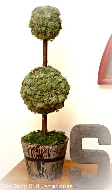 97 Best Images About Diy Topiary On Pinterest Diy Home