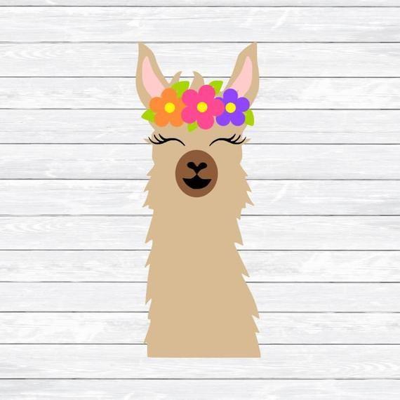 Pin On Llamas
