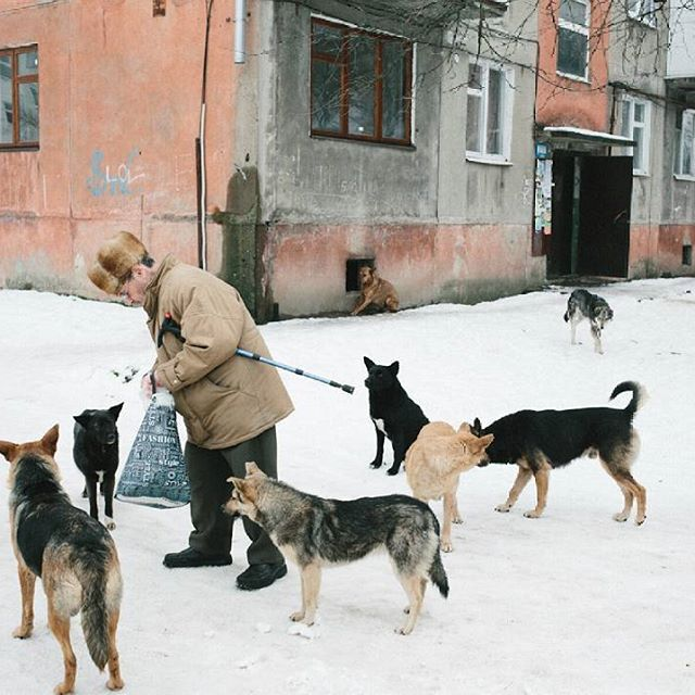 Hello, I am British photographer @chrisnunnphoto and I'll be taking over @thephotographersgallery Instagram this week.  I'll be posting new, old and unseen work mainly from Ukraine made over the last 2.5 years, plus some other bits an pieces. Stay tuned!  Image: A man feeds stray dogs in Kalush, February 2014 #Ukraine