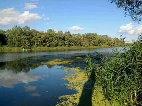 Het Tiszameer bij Tiszafured.
