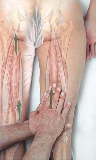 Hamstring massage for stretch and relief, strip upward