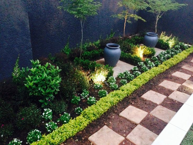More planting done. Planted buxus hedges around the cement slabs. These pots are only temporary.
