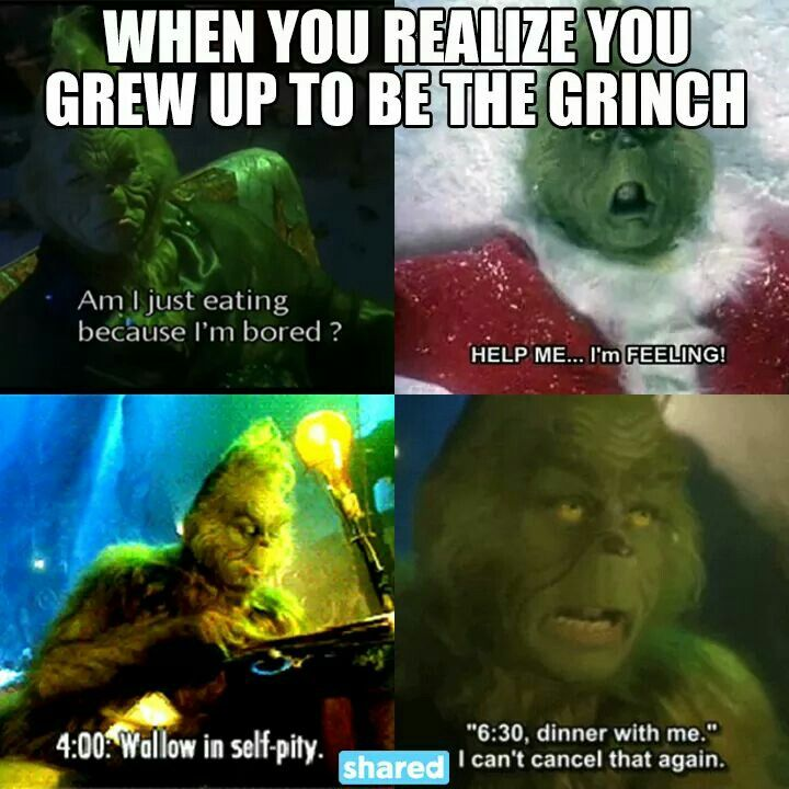 When you realize you grew up to be the grinch