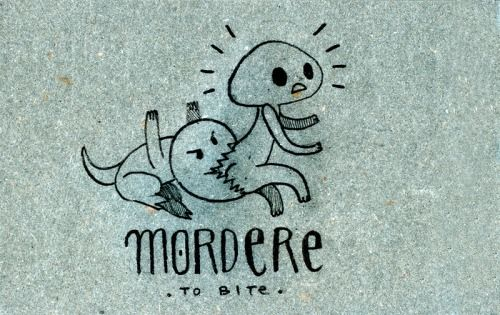 Learning Italian Language ~ Mordere (to bite) IFHN