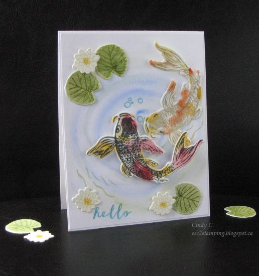 Hero Arts Water-Color Layering Koi | a2z Scrapbooking Supplies