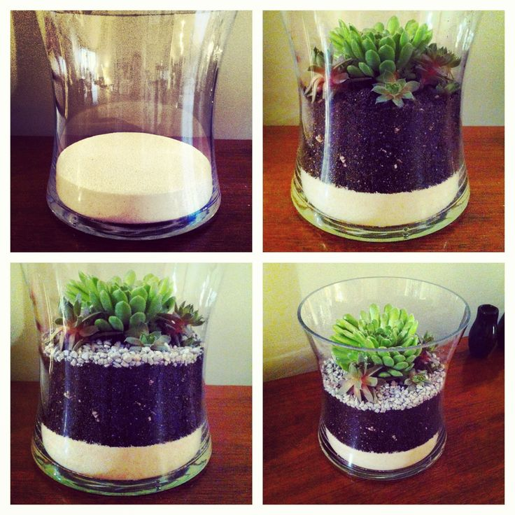 succulent terrariums with goods from Dig This on Fort St. We started by pouring a couple of inches of sand into the bottom of a glass vase.  We like it as a visual feature, but it also helps the soil to drain to avoid root rot.  On top of the sand, we added enough Cactus Soil to plant the succulents with room to grow. Once the large succulent was centered, we tucked a few small succulents around it.  Lastly, we covered the soil with decorative gravel