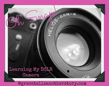 """""""Oh, Snap! Learning My DSLR Camera!"""" ~ A 30 Day Series"""