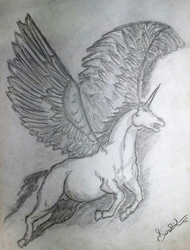 flying horse sketch