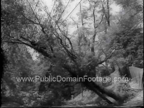 ▶ Hurricane Donna Hits East Coast of U.S. 1960 Public Domain Footage Newsreel PublicDomainFootage.com - YouTube