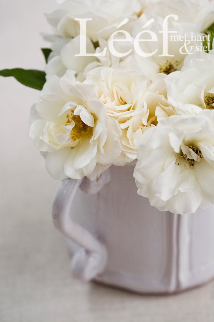 Wit rose/ Fotograaf: Candice Askham